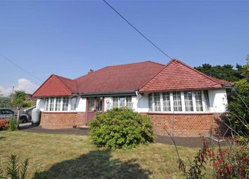 Thumbnail 3 bed bungalow for sale in Chestnut Avenue, Barton On Sea, New Milton