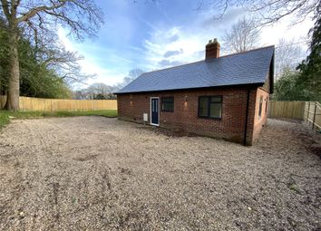 Thumbnail 3 bed bungalow to rent in Horsham Road, Holmwood, Dorking, Surrey