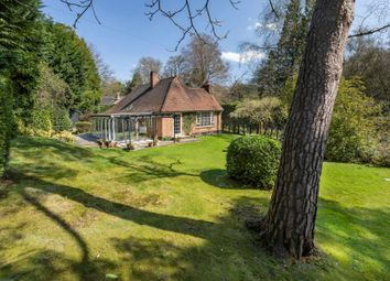 Thumbnail 3 bed detached bungalow to rent in Wentworth, Virginia Water, Surrey
