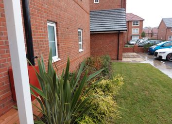 Thumbnail 2 bed property to rent in Tawny Grove, Canley, Coventry