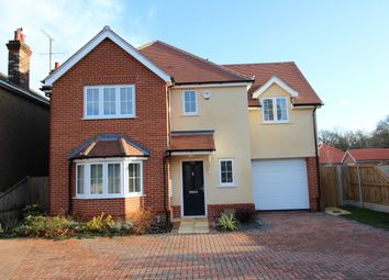 Thumbnail 4 bed detached house to rent in Orchard Gardens, Ipswich Road, Colchester
