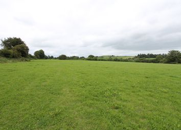 Thumbnail Property for sale in Clashbreeda, Carrigatoher, Nenagh, Tipperary
