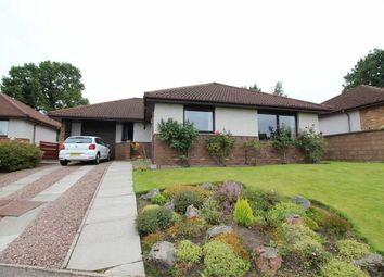 Thumbnail 3 bed detached bungalow for sale in 7, Caulfield Avenue, Inverness