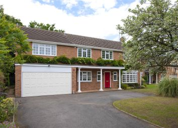 Thumbnail 5 bed detached house to rent in Pine Walk, Cobham, Surrey