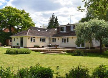 Thumbnail 4 bed detached house for sale in Frogham Hill, Stuckton, Fordingbridge