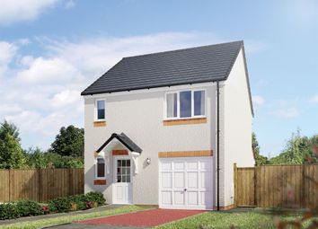 "Thumbnail 3 bedroom detached house for sale in ""The Fortrose"" at Hamilton Road, Larbert"