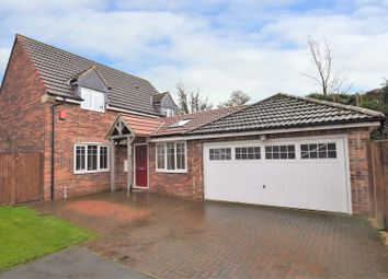 Thumbnail 4 bed detached house for sale in Orchard Mews, North Anston, Sheffield
