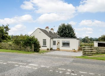 Thumbnail 3 bed bungalow for sale in Dumfries