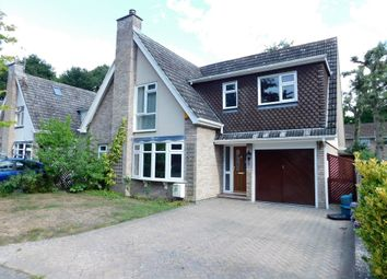 Thumbnail 4 bed detached house to rent in Rockingham Close, Colchester