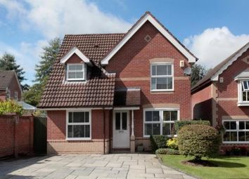 Thumbnail 4 bed detached house to rent in Beverley Way, Macclesfield