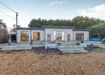 Thumbnail 4 bed bungalow to rent in Westwood Lane, Normandy, Guildford