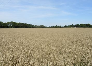 Thumbnail Land for sale in Ferne Lane, Ewell Minnis