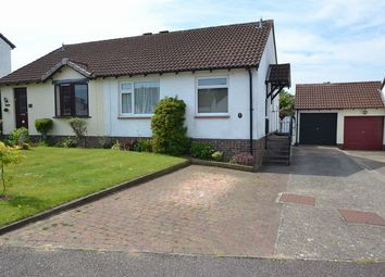 Thumbnail 2 bed semi-detached bungalow to rent in Hornbeam Close, Honiton