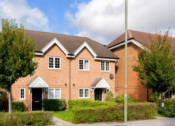 Thumbnail 2 bed semi-detached house to rent in Catteshall Lane, Godalming