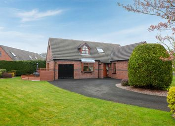 Thumbnail 4 bed detached house for sale in Railway Lane, Dungiven, Londonderry
