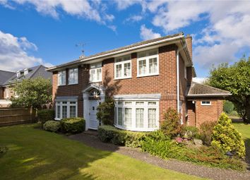 Thumbnail 4 bed detached house to rent in The Knoll, Cobham, Surrey