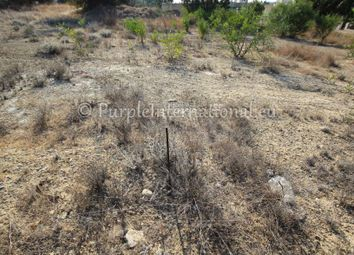 Thumbnail Land for sale in Ormideia, Cyprus