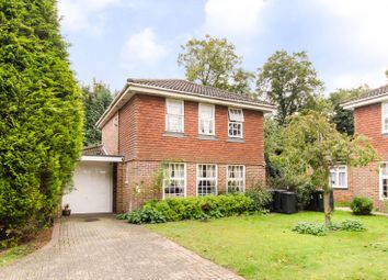 Thumbnail 4 bedroom detached house for sale in Waldorf Close, South Croydon