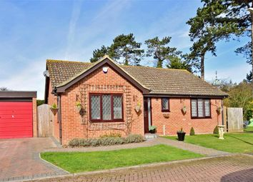 Thumbnail 3 bed bungalow for sale in Amos Close, Herne Bay, Kent