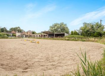 Thumbnail 3 bedroom detached house for sale in Soham, Ely, Cambridgeshire