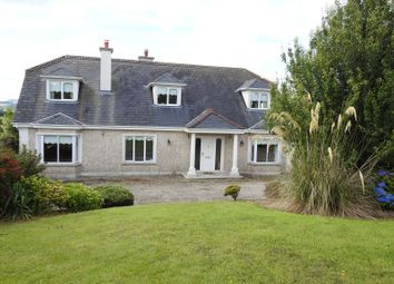Thumbnail 5 bed detached house for sale in Ryleen, New Ross, Wexford County, Leinster, Ireland