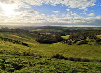 Thumbnail Land for sale in Penstone, Colebrooke, Crediton