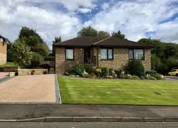 Thumbnail 4 bed bungalow to rent in Abbey Park, Perth