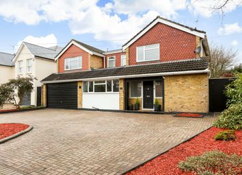 Thumbnail 5 bed detached house to rent in Eastwick Road, Burwood Park, Hersham, Walton-On-Thames