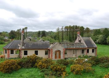 Thumbnail 4 bed property for sale in Demesne Road, Ballynahinch