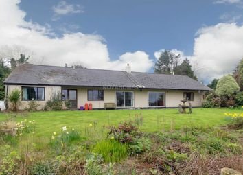 Thumbnail 4 bed detached bungalow for sale in Delaware Road, Gunnislake