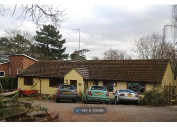 Thumbnail 4 bed bungalow to rent in Fen Walk, Woodbridge