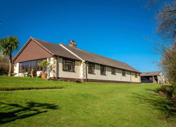 Thumbnail 4 bed detached bungalow for sale in Coleford, Crediton