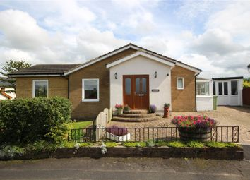 Thumbnail 4 bed bungalow for sale in Braeside, Monkhill, Burgh-By-Sands, Carlisle