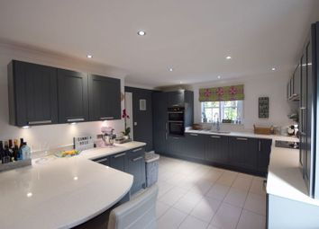 Thumbnail 4 bedroom detached house to rent in Mariana Close, Chellaston, Derby
