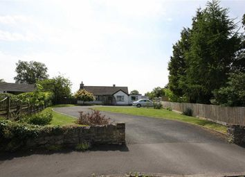 Thumbnail 4 bed detached bungalow for sale in Ringsbury Close, Purton Swindon, Wiltshire