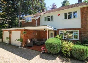 Thumbnail 4 bed detached house for sale in Carlinwark Drive, Camberley, Surrey