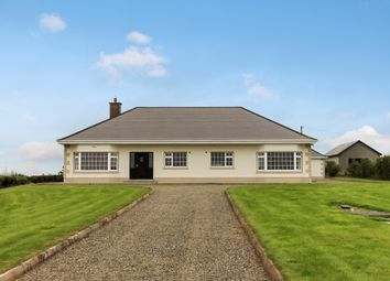 Thumbnail 5 bed bungalow for sale in Newtown-Guest, Cloughjordan, Tipperary