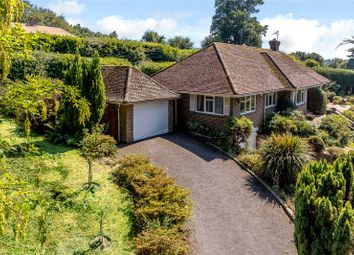 Thumbnail 4 bed bungalow for sale in Midhurst Road, Haslemere, Surrey