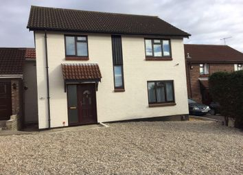 Thumbnail Room to rent in Egret Crescent, Colchester