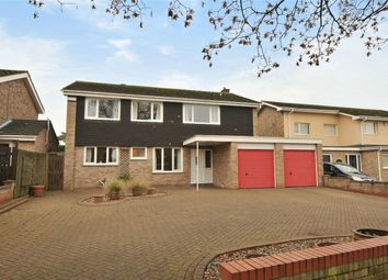 Thumbnail 5 bed detached house for sale in Putnoe Lane, Bedford