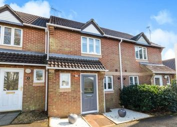 Thumbnail 2 bed property to rent in Hazel Road, Four Marks, Alton