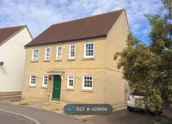 Thumbnail 4 bed detached house to rent in Wissey Way, Ely