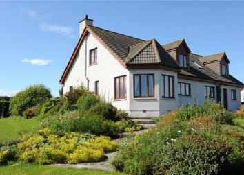 Thumbnail 4 bed detached house for sale in Skelbo Street, Dornoch, Sutherland