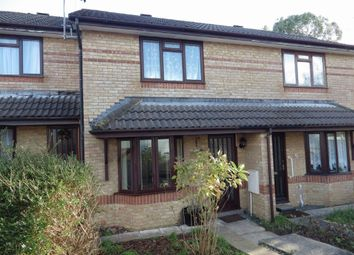 Thumbnail 2 bed terraced house to rent in Juniper Court, Roundswell, Barnstaple