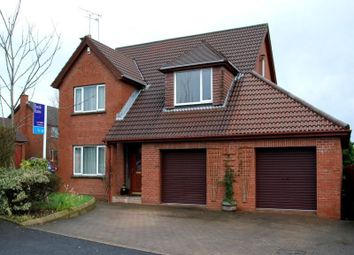 Thumbnail 4 bed detached house to rent in Beechfield Drive, Bangor