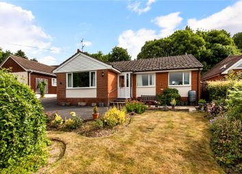 Thumbnail 4 bed detached bungalow for sale in Church Road, North Waltham, Hampshire