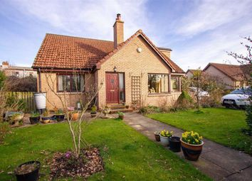 Thumbnail 4 bed bungalow for sale in Woodside Park, Horncliffe, Berwick-Upon-Tweed