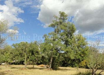 Thumbnail Land for sale in Lorgues, 83510, France