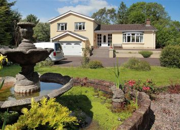 Thumbnail 4 bed detached house for sale in Crossgar Road East, Crossgar, Co. Down