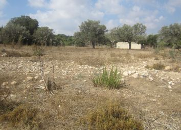 Thumbnail Land for sale in Sipahi, Cyprus